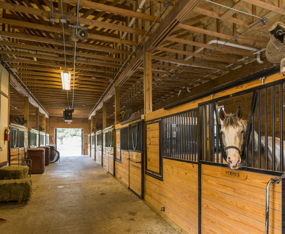 Nopd Mounted Division Horse Stables Scnz Architects